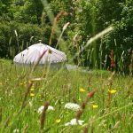 Two Night Yurt Retreat