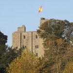 Medieval Falconry at Hedingham Castle
