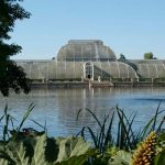 Kew Gardens Entry and Afternoon Tea for Two