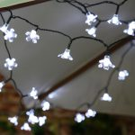Solar Blossom Fairy Lights, 50 White LEDs, 5m