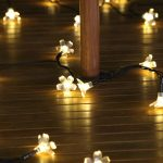 Solar Blossom Fairy Lights, 50 Warm White LEDs, 5m