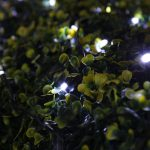 Solar Fairy Lights, 50 White LED, 5m