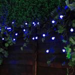 Solar Multi Function Berry Fairy Lights