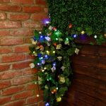 Solar Berry Fairy Lights, 50 Multi Colour LEDs, 5m
