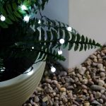Solar Berry Fairy Lights, 50 White LEDs, 5m
