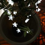 Solar Star Fairy Lights, 50 White LEDs, 5m