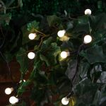 Solar Berry Fairy Lights, 50 Warm White LEDs, 5m
