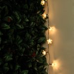 Solar Cherry Blossom Fairy Lights, 50 Warm White LEDs, 5m