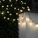 Solar Star Fairy Lights, 50 Warm White LEDs, 5m