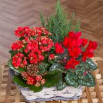 Winter Flower Basket