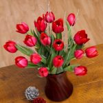 Red Christmas Tulips